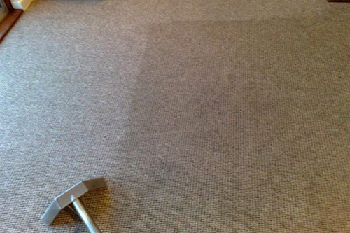 Carpet cleaning in process